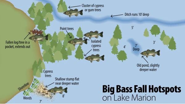 Lake Marion Depth Map Related Keywords & Suggestions - Lake Marion