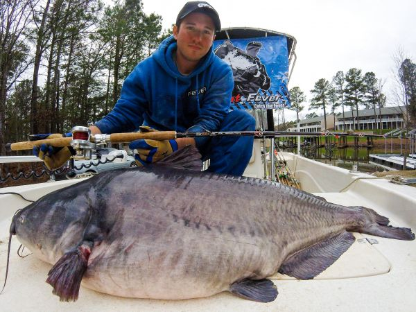 Angler sets new blue catfish record shatters that record for Freshwater fishing in north carolina