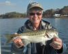 Spotted bass have become Lake Norman's primary gamefish, and they've had on their feed bags lately.